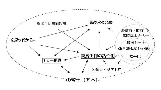 自然農法無農薬栽培田における雑草制御のメカニズムについての概念図